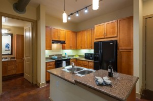 One Bedroom Apartments for Rent in Houston, Texas - Model Kitchen with Double Sinks & Breakfast Bar with Bathroom View